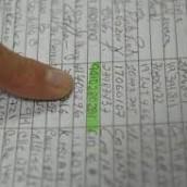 Elecciones: agrupaciones electorales